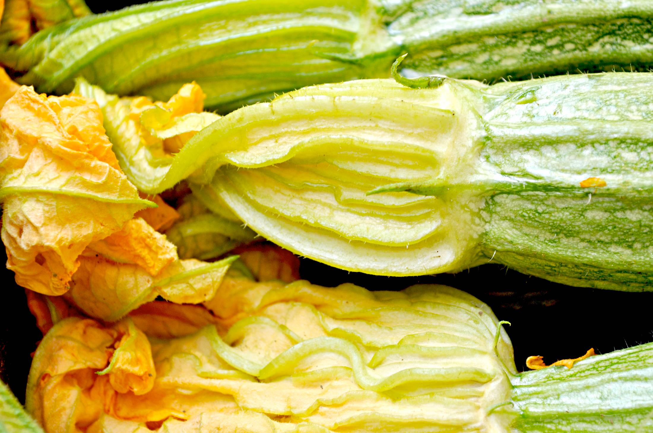 Zucchini flower fresh from the market